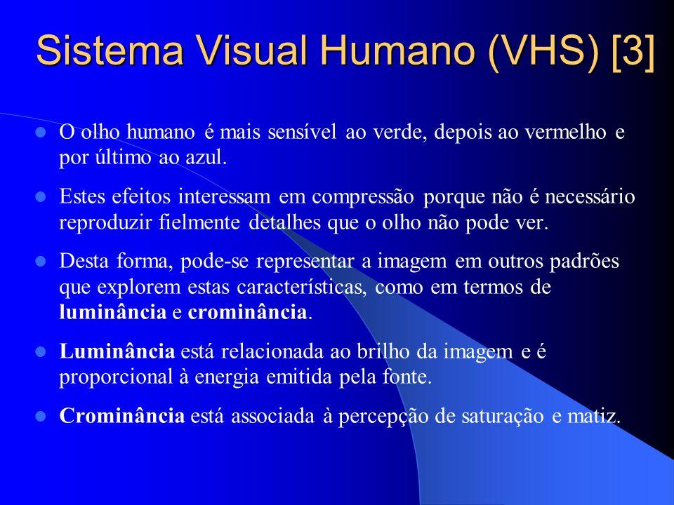 Sistema Visual Humano (VHS) [3]